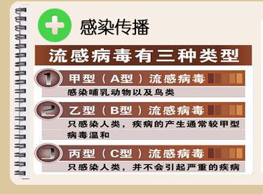 甲型H1N1流感个人防护与治疗